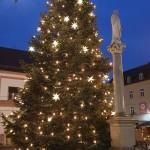 Moosburger Weihnachtsbaum